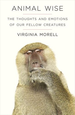Book Animal Wise: The Thoughts And Emotions Of Our Fellow Creatures by Virginia Morell