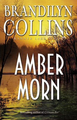 Book Amber Morn by Brandilyn Collins