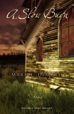 Book A Slow Burn: A Novel by Mary E Demuth
