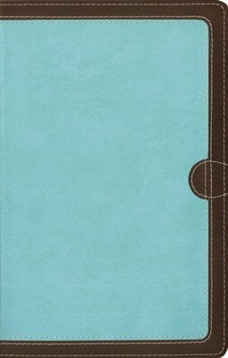 Book NIV, Thinline Bible, Imitation Leather, Brown/Blue, Red Letter Edition by Zondervan