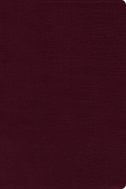 Book Niv, Reference Bible, Large Print, Bonded Leather, Burgundy, Red Letter Edition by Zondervan