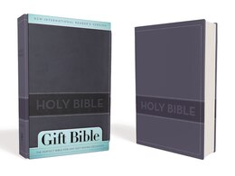 Book NIrV, Gift Bible, Imitation Leather, Blue by Zondervan