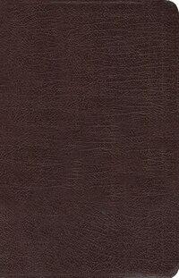 New Women's Devotional Bible, Bonded Leather, Burgundy