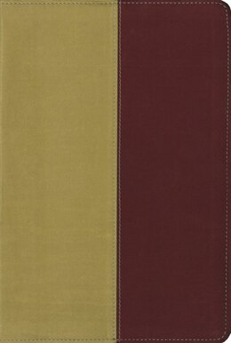 Book KJV, Amplified, Parallel Bible, Imitation Leather, Yellow/Red by Zondervan Zondervan