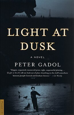 Book Light at Dusk: A Novel by Peter Gadol