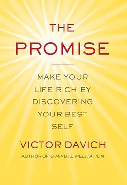 Book The Promise: Make Your Life Rich by Discovering Your Best Self by Victor Davich