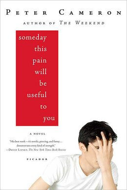 Book Someday This Pain Will Be Useful To You: A Novel by Peter Cameron
