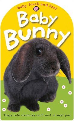 Book Baby Touch And Feel Baby Bunny by Roger Priddy