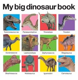 Book My Big Dinosaur Book by Roger Priddy