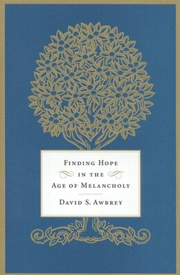 Book Finding Hope in the Age of Melancholy: Melancholy by David S. Awbrey