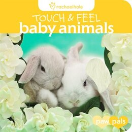 Book Touch & Feel: Baby Animals by Rachael Hale