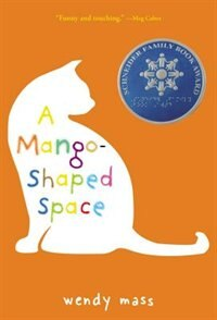 A Mango-Shaped Space: A Novel