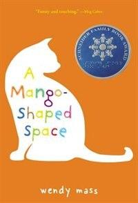 A Mango-Shaped Space: A Novel