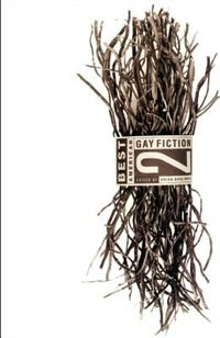 Best American Gay Fiction #2: Best Amer Gay Fiction 2