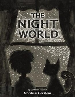 Book The Night World by Mordicai Gerstein