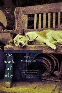 Book The Book Of Why: A Novel by Nicholas Montemarano