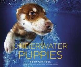 Book Underwater Puppies by Seth Casteel
