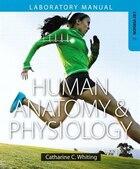 Human Anatomy & Physiology Laboratory Manual: Making Connections, Cat Version Plus Masteringa&p…