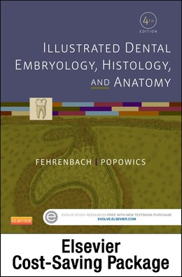 Book Illustrated Dental Embryology, Histology, And Anatomy - Text And Student Workbook Package by Margaret J. Fehrenbach