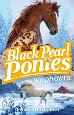 Book Black Pearl Ponies 02: Wildflower by Jenny Oldfield