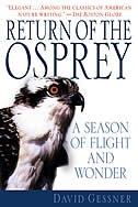Book Return of the Osprey: A Season of Flight and Wonder by David Gessner