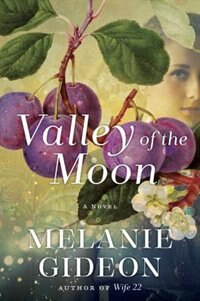 Valley Of The Moon: A Novel by Melanie Gideon