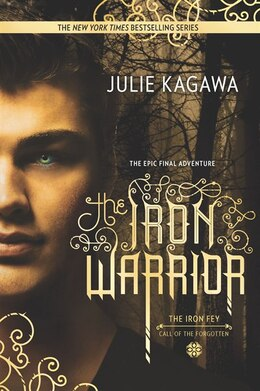 Book The Iron Warrior by Julie Kagawa