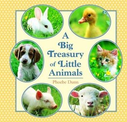 Book Big Treasury of Little Animals by Phoebe Dunn