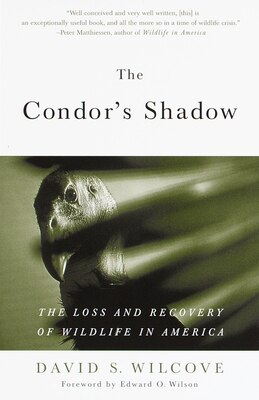 Book The Condor's Shadow: The Loss And Recovery Of Wildlife In America by David S. Wilcove