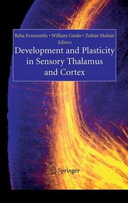 Book Development and Plasticity in Sensory Thalamus and Cortex by Reha Erzurumlu