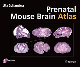 Book Prenatal Mouse Brain Atlas: Color images and annotated diagrams of: Gestational Days 12, 14, 16 and… by Uta Schambra