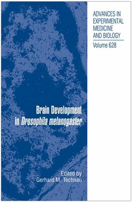 Book Brain Development in Drosophila melanogaster by Gerhard Martin Technau