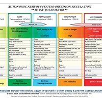 Autonomic Nervous System Table: Laminated Card