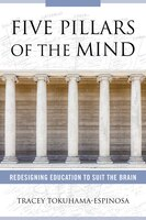 Five Pillars Of The Mind: Redesigning Education To Suit The Brain