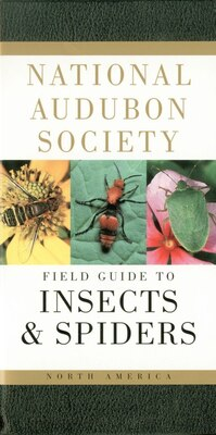 Book National Audubon Society Field Guide To Insects And Spiders: North America by National Audubon Society