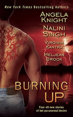 Book Burning Up by Knight, Angela