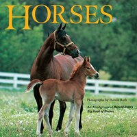 Horses: An Abridgement Of Harold Roth's Big Book Of Horses