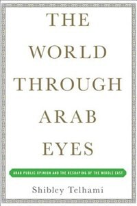 The World Through Arab Eyes: Arab Public Opinion and the Reshaping of the Middle East by Shibley Telhami