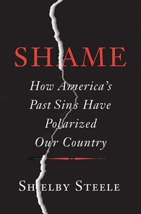 Shame: How America?s Past Sins Have Polarized Our Country