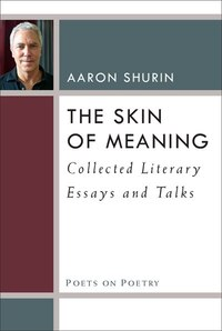 The Skin Of Meaning: Collected Literary Essays And Talks