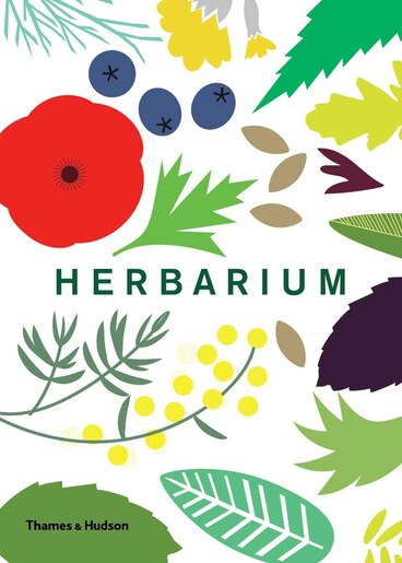Herbarium: One Hundred Herbs To Grow, Cook, & Heal by Caz Hildebrand