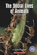 Book True Books: The Social Lives of Animals: Animals by Katherine Gleason
