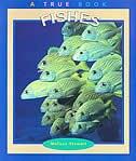 True Books: Fishes: Animals by Melissa Stewart