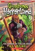 Goosebumps Horrorland #19: The Horror at Chiller House by R L Stine