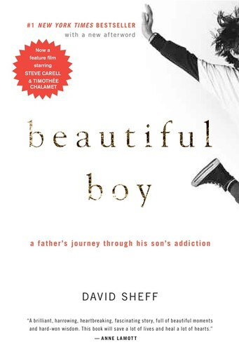 Beautiful Boy  A Father s Journey Through His Son s Addiction de David ... 259e985fca8e