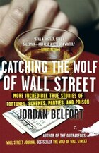 Catching The Wolf Of Wall Street: More Incredible True Stories Of Fortunes, Schemes, Parties, And…