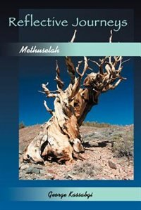 Reflective Journeys...: Methuselah by George Kassabgi
