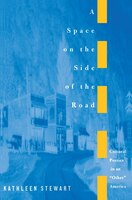 A Space on the Side of the Road: Cultural Poetics in an Other America