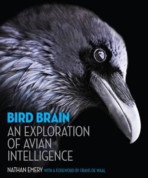 Bird Brain: An Exploration of Avian Intelligence by Nathan Emery