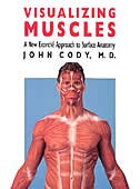 Visualizing Muscles: A New Ecorche Approach to Surface Anatomy